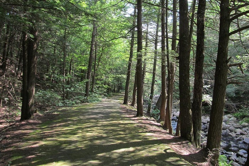 Granville-State-Forest