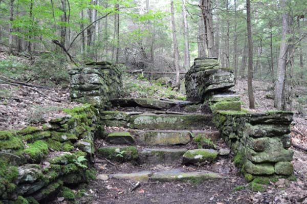 Chester/Blandford State Forest in Western Massachusetts
